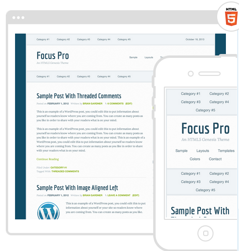 best wordpress theme focus