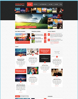 best wordpress theme immunity