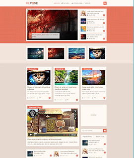 best wordpress theme repose