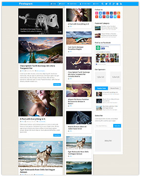 pint wordpress magazine theme