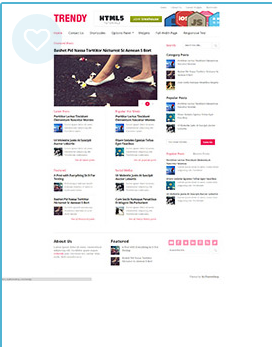 trendy wordpress magazine theme