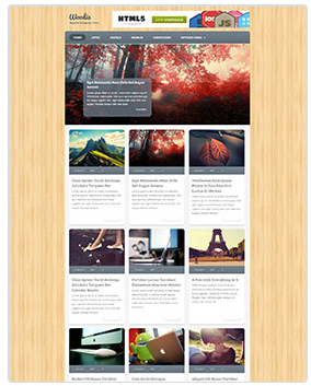woody wordpress magazine theme