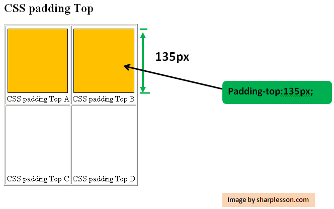 Learn CSS padding top.